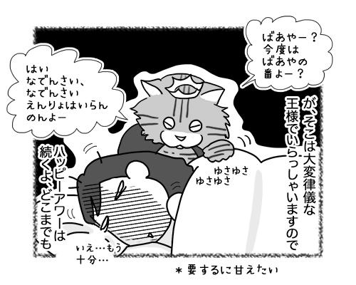 GIF22032019_cat4.jpg