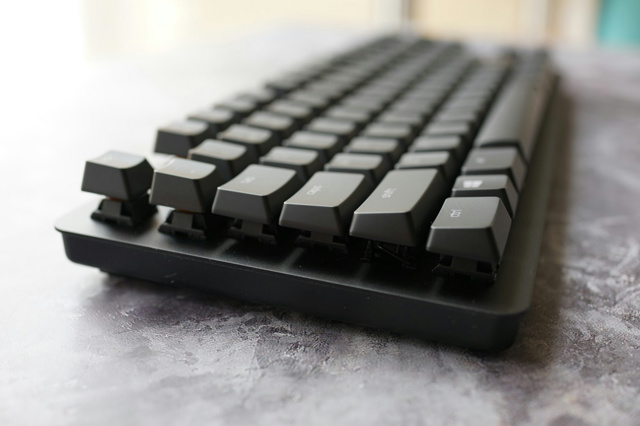 Razer_BlackWidow_Lite_11.jpg