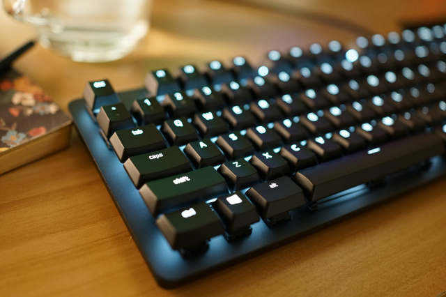 Razer_BlackWidow_Lite_19.jpg
