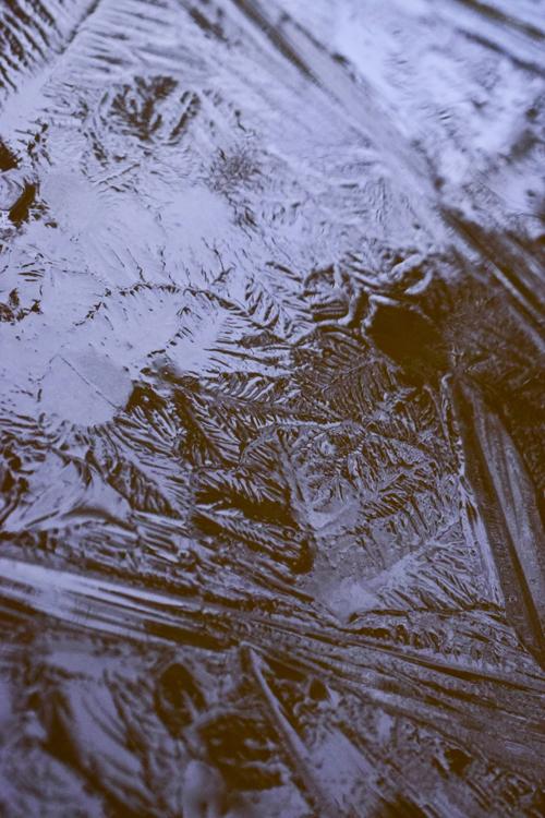 ice_19_1_30_4.jpg