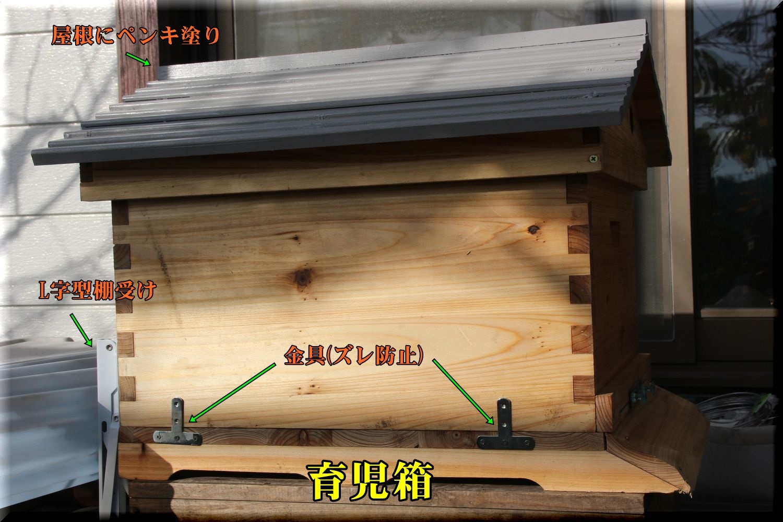 1box181116_002.jpg
