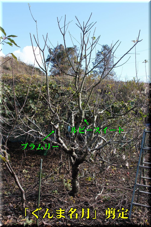 1gunma181214_003.jpg