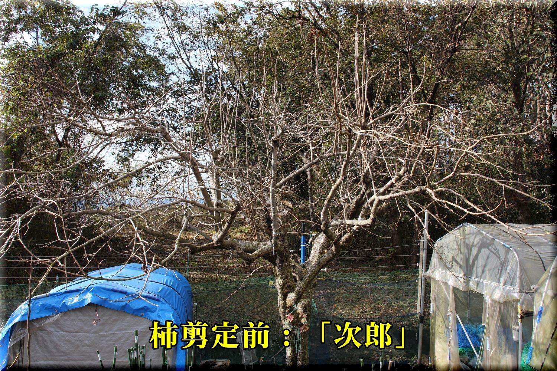 1jirou181224_001.jpg