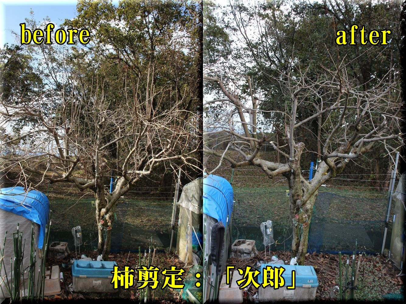 1jirou181224_002.jpg