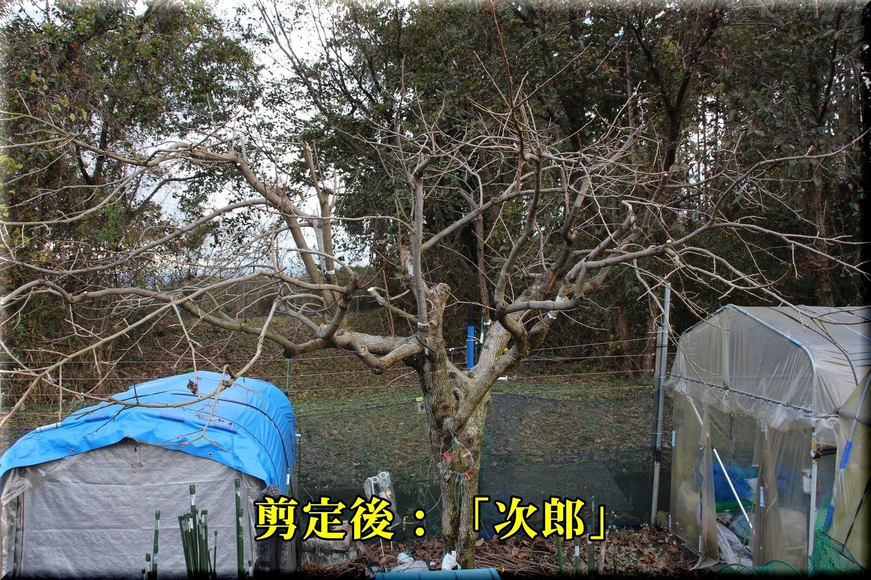 1jirou181224_007.jpg