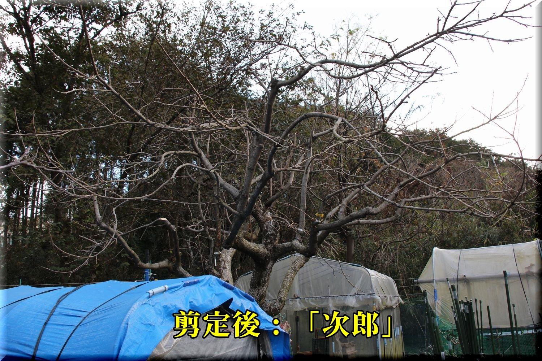 1jirou181224_010.jpg