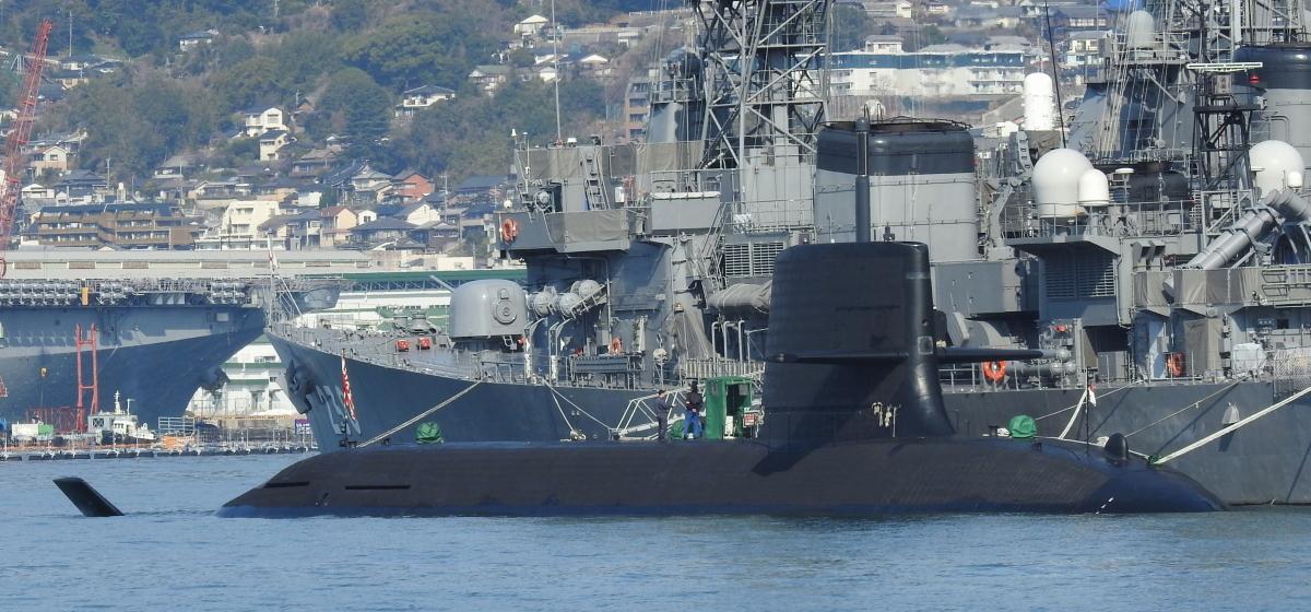 DSCN8118 (1)