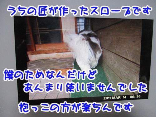 0314-05_20190314173334d7d.jpg
