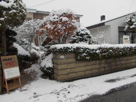 11月21日初雪