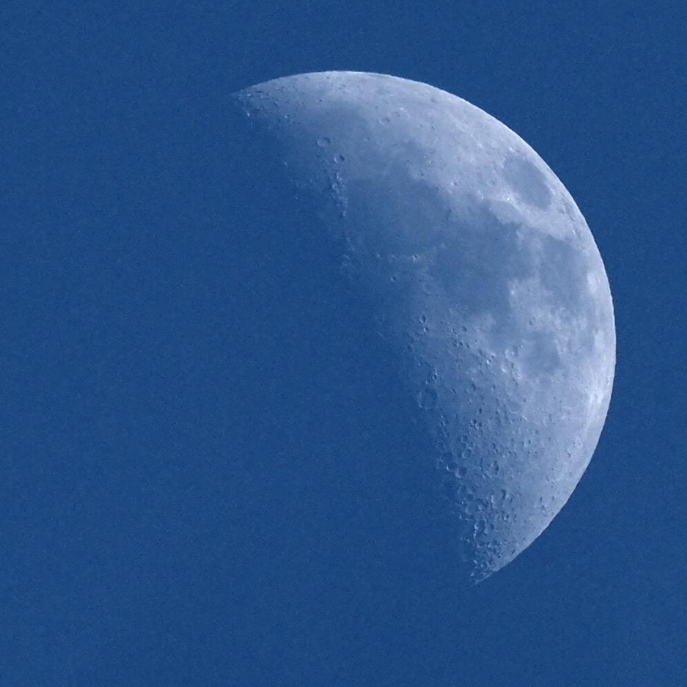 moon-2019-02-12mk-M1120564.jpg