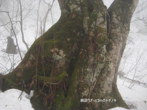 ゆうゆう山歩クラブ例会(臥龍山) 015-002