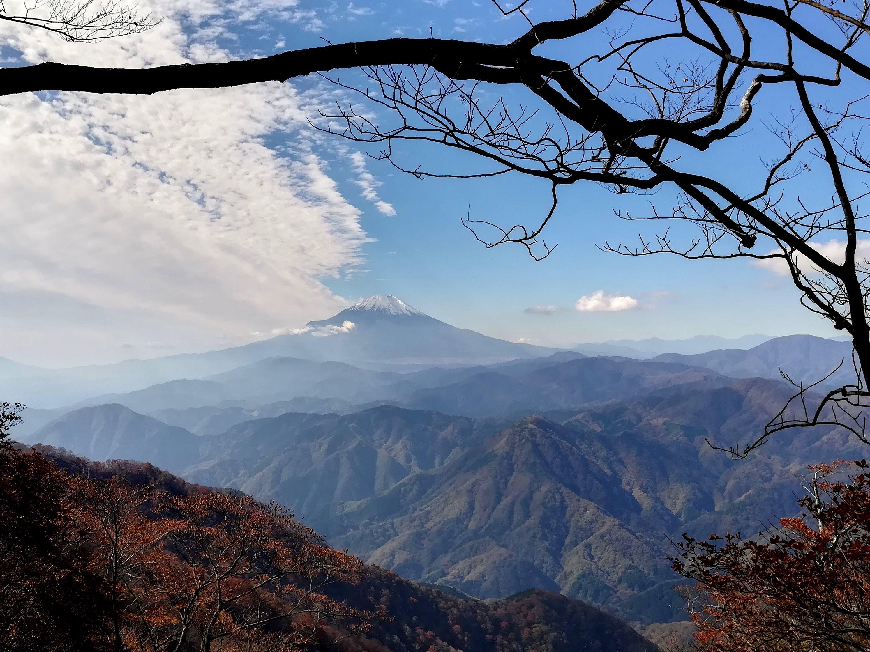 檜洞丸山頂分岐での富士