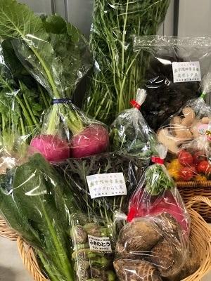 2019 2野菜セット