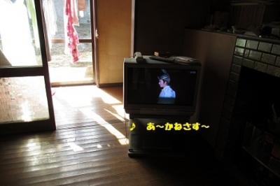 IMG_0109.jpg