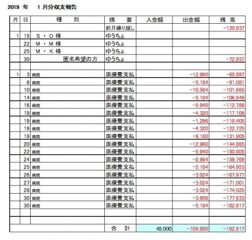 2019年1月分収支報告