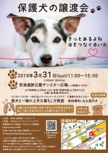 20190331譲渡会ポスターA3