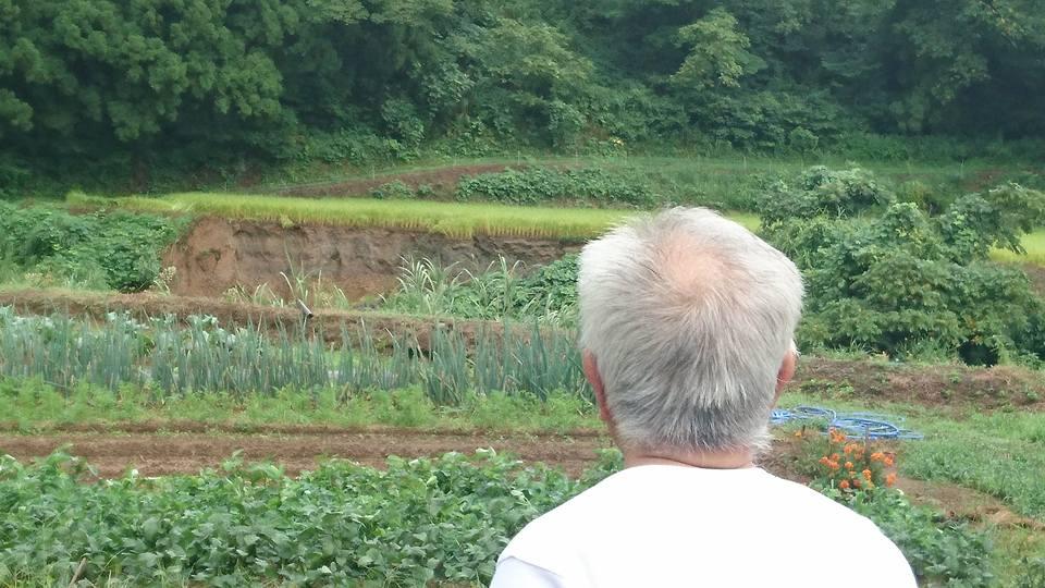 【無情な雨。被災した吉川区を視察】-2
