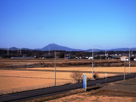 P1180007s.jpg