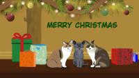 babaちゃまのクリスマス