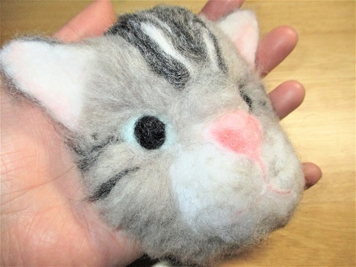 アメショ猫さん2