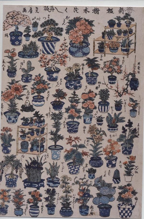 イメージ (1743)