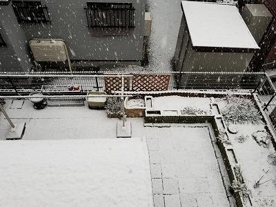 20181121_初雪 (2)