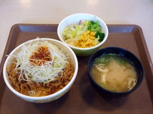 【旨辛ダレ】白髪ねぎ牛丼サラダセット