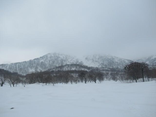 3月4日 和田牧場跡から野伏ヶ岳