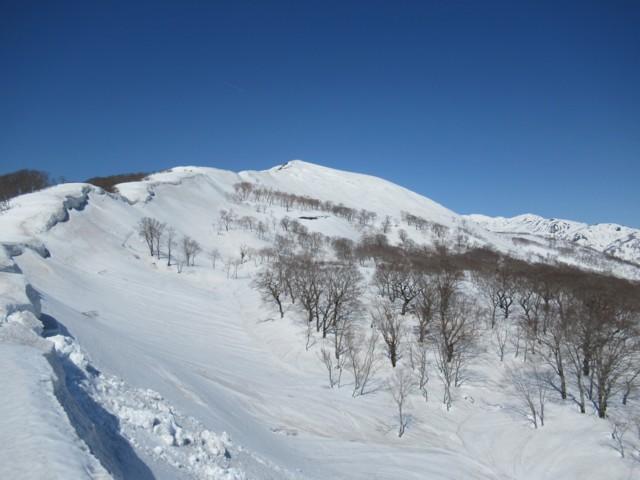 3月17日 薙刀山もうすぐ