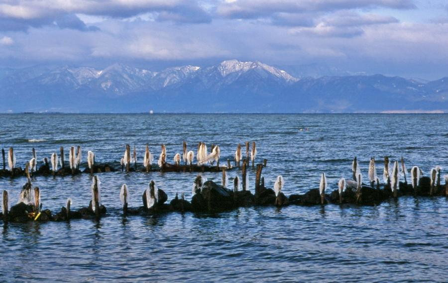 朝の琵琶湖02